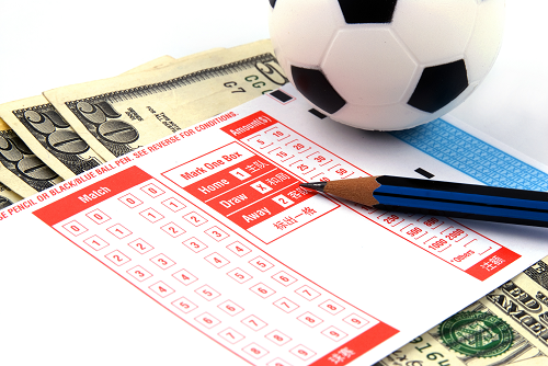 How do professional sports bettors make profits from betting systems that work?